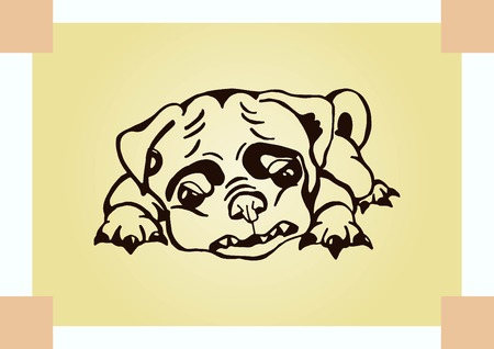 small dog: Vector illustration of a puppy. A small dog.