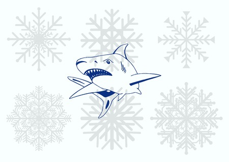 Shark icon. Vector illustration