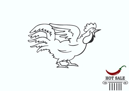 Poultry icon. Vector illustration. Chicken icon. Rooster icon.