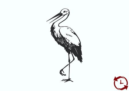 Bird icon. Heron, Stork vector illustration.