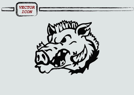 ferocious: Vector illustration of the evil head, ferocious, aggressive boar. Predatory, dangerous beast. Angry wild boar. piggy web icon.