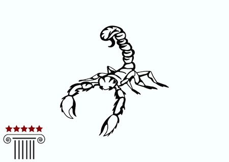 Vector illustration of an evil, savage, aggressive scorpion. Predatory, dangerous beast. Angry poisonous spider.