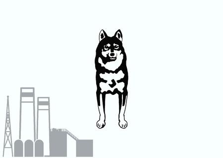 human tongue: Vector illustration of a dog. Aggressive purebred dog. Illustration
