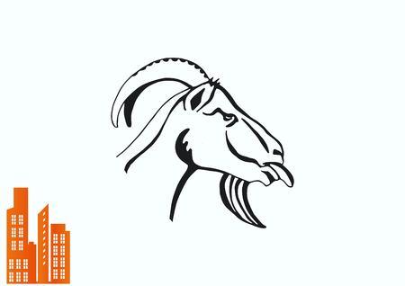aries: Illustration of a goat. Mountain argali. Illustration