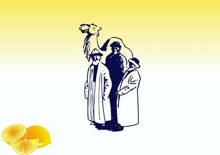 Camel, vector illustration. Illustration