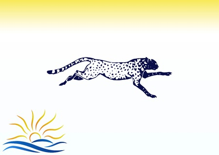 A Vector illustration of an evil, wild, aggressive leopard. Prey, cheetah dangerous. Offensive cougar. Panther. Illustration