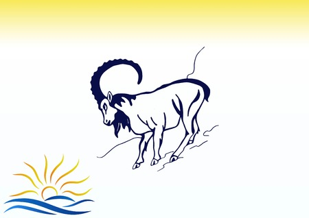 aries: Vector illustration of a goat