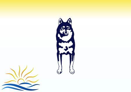 best protection: Vector illustration of a dog. Aggressive purebred dog. Illustration