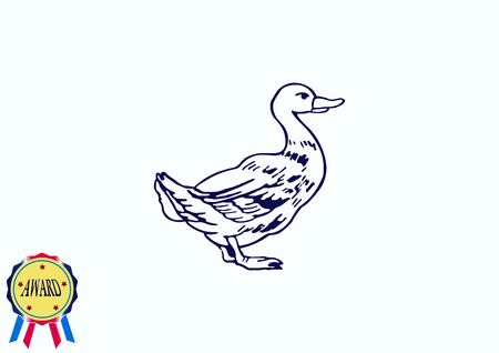 Duck icon. Poultry icon. Vector illustration. Illustration