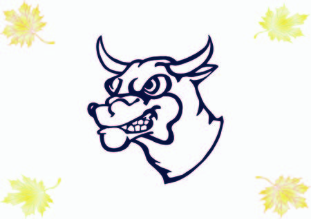 Vector illustration of the evil head, ferocious, aggressive bull. Predatory, dangerous beast. Angry bison.