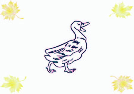 Duck icon. Poultry icon. Vector illustration. 向量圖像