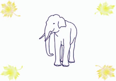 Vector illustration of an elephant's head. Large, dangerous beast. Logo, graphics elephant.