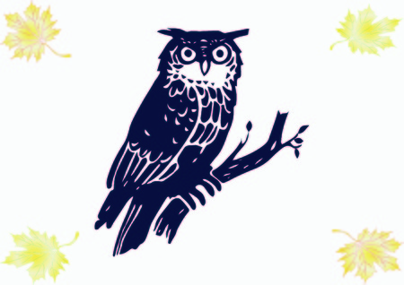 Bird icon. Owl vector illustration.