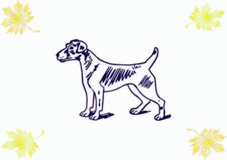 Vector illustration of a dog. Aggressive purebred dog.