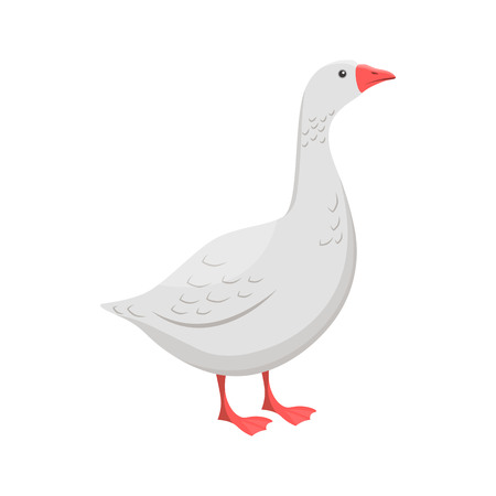 Vector illustration of a goose