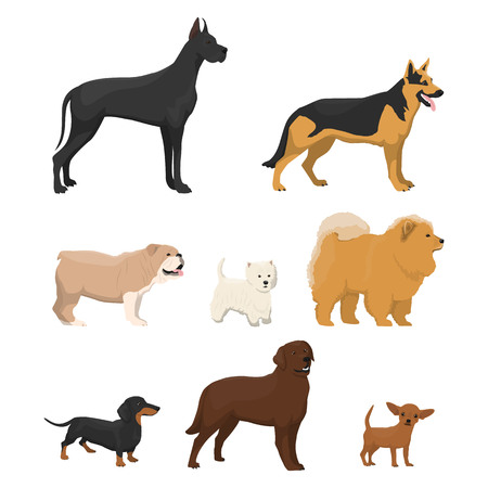 Vector illustrations set of different kinds of dog