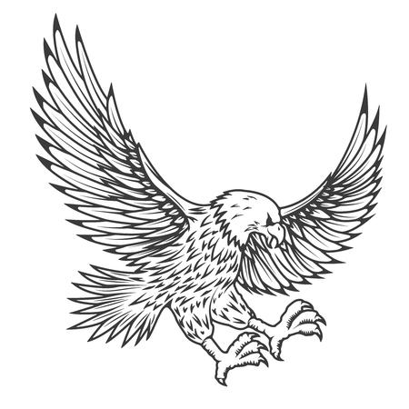 비행 독수리 흰 배경에 고립의 그림. 벡터 일러스트 레이 션. 일러스트