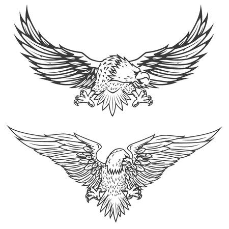 Illustratie van vliegende adelaar die op witte achtergrond wordt geïsoleerd. Vector illustratie. Stock Illustratie