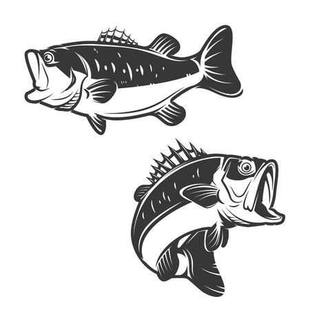 Set of bass fish icons isolated on white background. Design elements , label, emblem, sign, brand mark. Vector illustration.