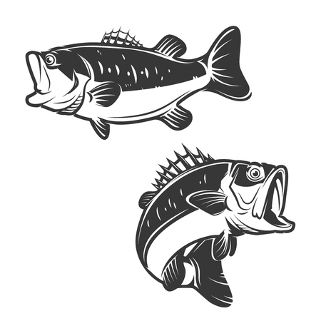 fishery: Set of bass fish icons isolated on white background. Design elements , label, emblem, sign, brand mark. Vector illustration.