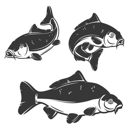 白い背景で隔離の鯉魚アイコンのセットです。要素ラベル、エンブレム、サイン、ブランド マークをデザインします。ベクトルの図。