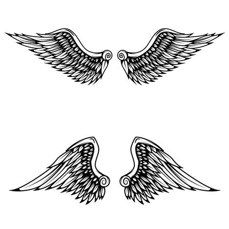 Vintage wings isolated on white background. Design elements , label, emblem, sign, brand mark. Vector illustration.