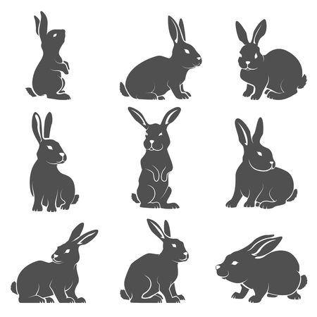 Set of rabbit icons isolated on white background. Vector illustration.
