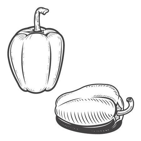 Set of bell  pepper icons isolated on background. Design elements for menu, poster, emblem, sign. Vector illustration.