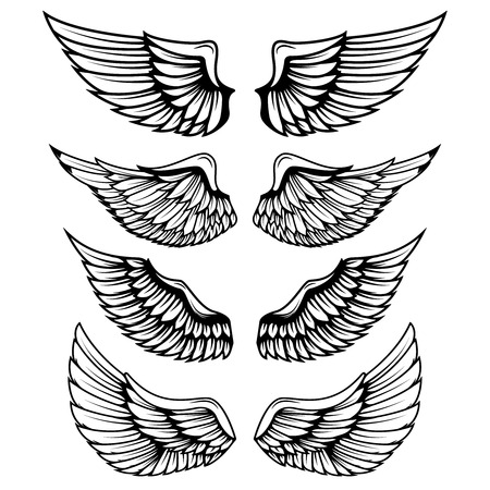 Vintage wings isolated on white background. Design elements , label, emblem, sign, brand mark. Vector illustration.