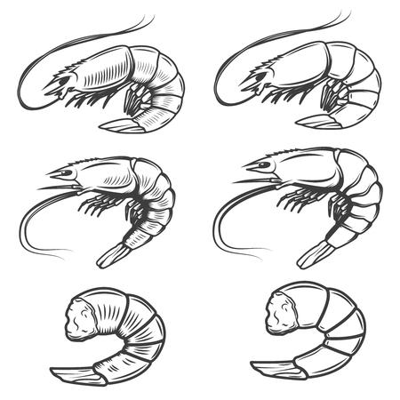 Set of shrimps icons isolated on white background. Seafood. Design elements for label, emblem, sign, brand mark.  イラスト・ベクター素材