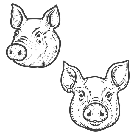 Set of pig heads isolated on white background. Pork meat. Design element for label, emblem, sign, poster.