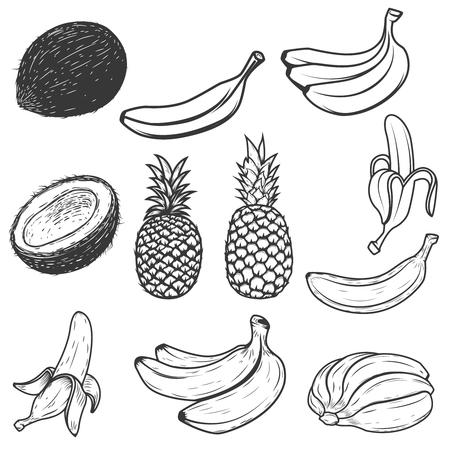 Set of tropical fruits isolated on white background. Design elements for label, emblem, sign, brand mark. Illustration