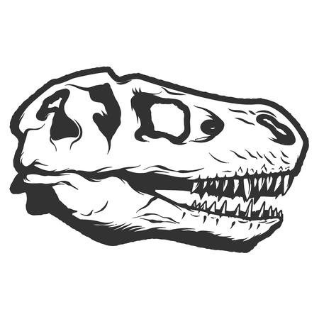 labratory: t-rex dinosaur skull isolated on white background. Images for label, emblem. Illustration