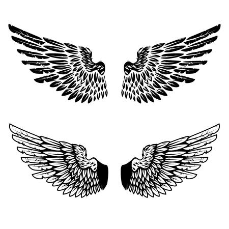 Vintage wings isolated on white background. Design elements for logo, label, emblem, sign, brand mark. Vector illustration. Imagens - 75904040