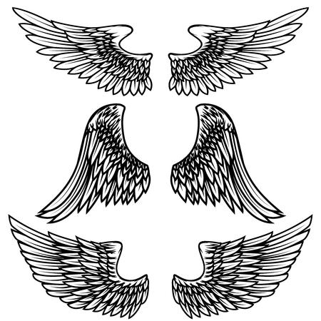 Uitstekende vleugels die op witte achtergrond worden geïsoleerd. Ontwerpelementen voor logo, label, embleem, teken, merkmarkering. Vector illustratie.