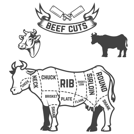 Beef cuts butcher diagram. Cow illustrations on white background. Design elements for poster, menu. Vector illustration