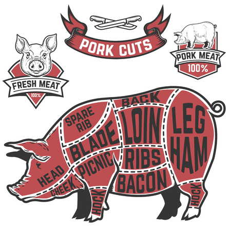 Pork cuts butcher diagram. Cow illustrations on white background. Design elements for poster, menu. Vector illustration