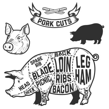 豚肉は、肉屋の図をカットします。ポスター、デザイン要素メニュー。ベクトル図