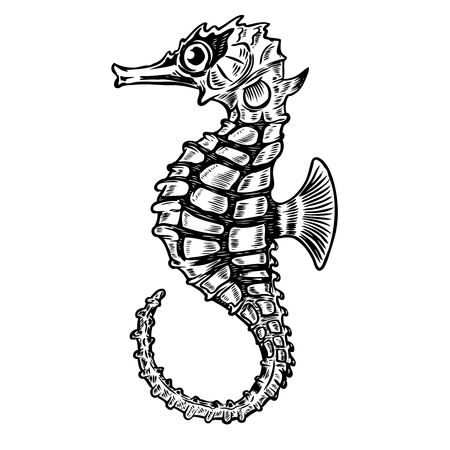 Seahorse illustration isolated on white background. Design element for poster, t-shirt. Vector illustration