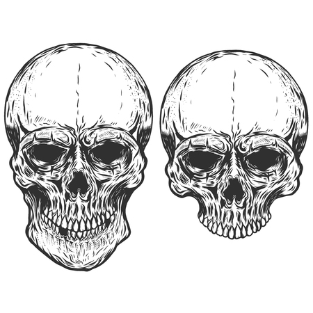 Set of human skulls isolated on white background. Vector design elements