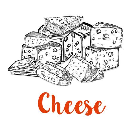 白い背景に分離されたチーズ カットのセットです。レストランのメニュー、ポスターのデザイン要素です。ベクトル図