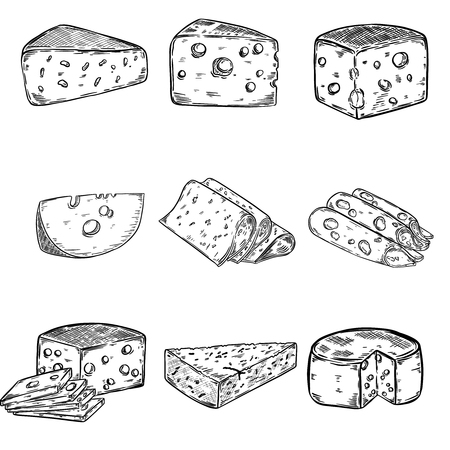 Set of Cheese illustrations isolated on white background. Design elements for poster, menu. Vector illustration