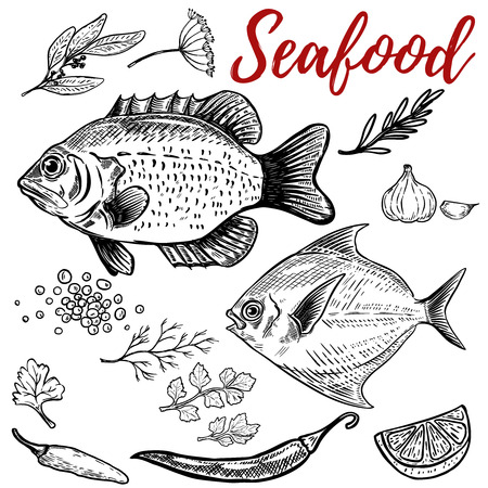 Seafood. Fish illustrations with spices. Design elements for poster, menu. Vector illustration Çizim