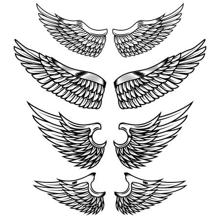 Reeks vleugels op witte achtergrond worden geïsoleerd die. Ontwerpelementen voor logo, label, embleem, teken, badge. Vector illustratie