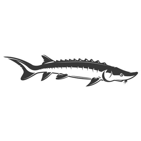 チョウザメ魚アイコンを白い背景に分離します。ベクトル図