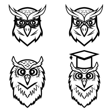 Set of the owl heads isolated on white background. Vector illustration Illustration