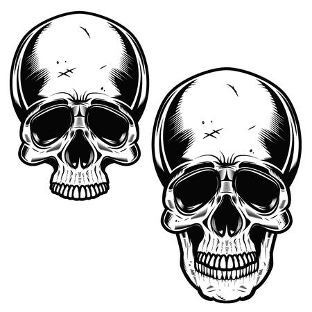 Collection Of Hand Drawn Skulls In Monochrome. Vector Skulls Illustrations Illustration