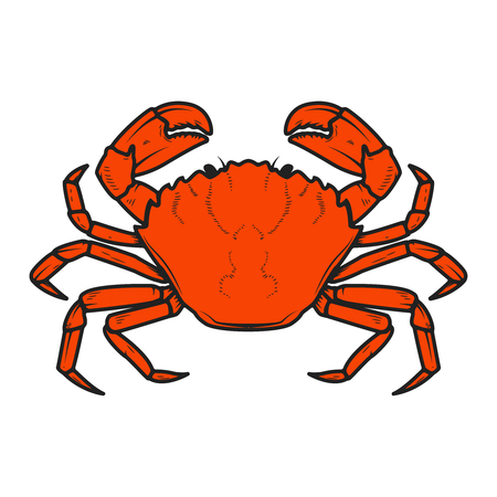 Crab icon isolated