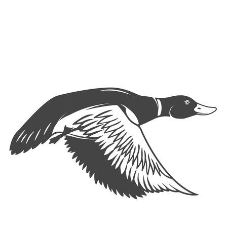 Dzika kaczka ikona odizolowywająca na białym tle. Projektowanie elementów logo, etykiety, godło, znak. Ilustracji wektorowych