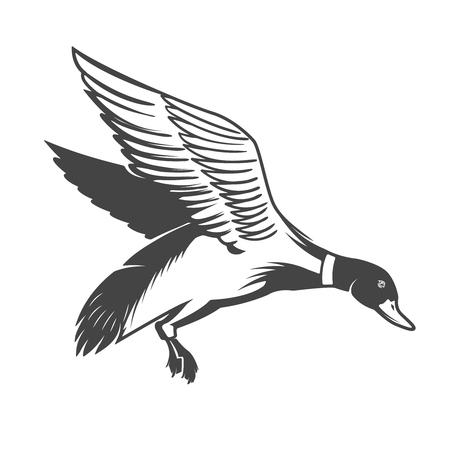 Wild duck icon Vector illustration